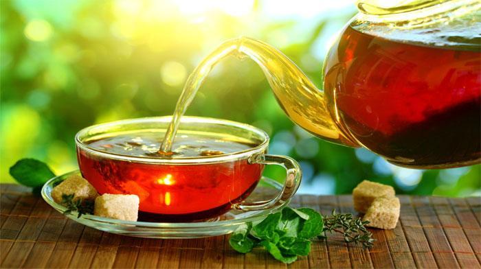 Полезные свойства обыкновенного чая