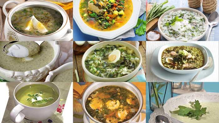 9 рецептов вкусных супов со щавелем